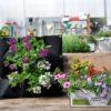 הערכה מכילה: מתלה כיסים פרחים פורחים שמתאימים לחוץ