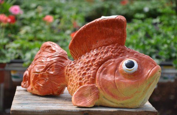 דג זהב מבטון לגינה