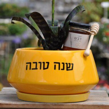 מהם הצמחים והאדניות המתאימים כמתנות לעובדים לקראת ראש השנה?