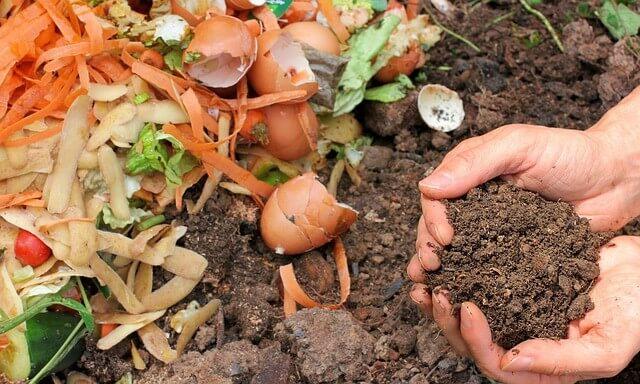 קומפוסט וחומרים שעוזרים לגינה לפרוח